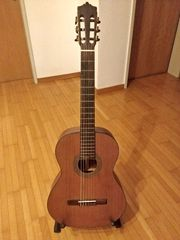 Gitarre Martinez MC-35C