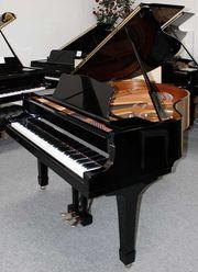 Flügel Klavier Yamaha C1 Silent