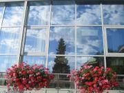 Corona Hitze - Sonnenschutzfolien Sichtschutz Blendschutz