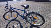 Citybike in blau von Treck
