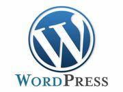 Webdesign Homepage Erstellung Wordpress