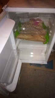 Einbau-Kühl- Gefrierkombi
