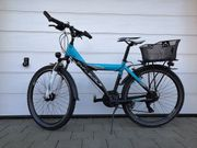 Cyclewolf Lotus 26 Zoll Jugendrad
