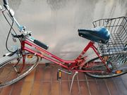 Fahrrad Triumph Barando