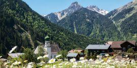 Suche Kauf-Immobilie in St. Gallenkirch