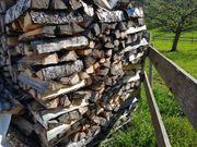 Brennholz Birkenholz