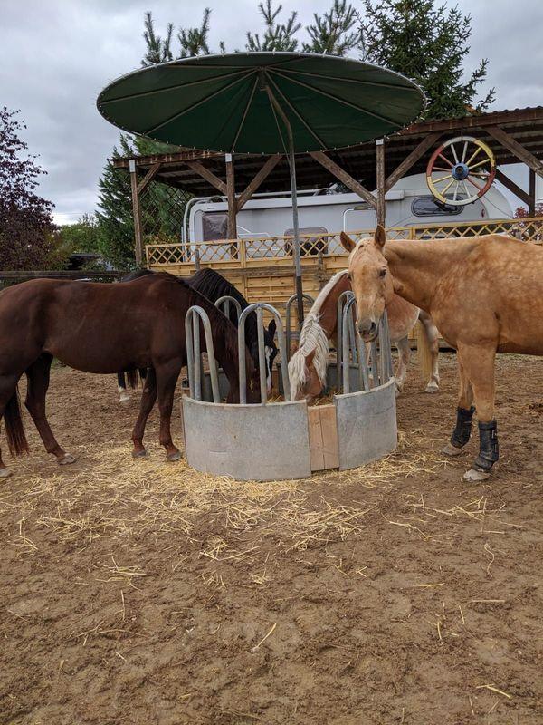Rundraufe für Pferde mit Dach