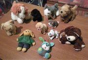 Stofftiere - 11 Hunde nur zusammen