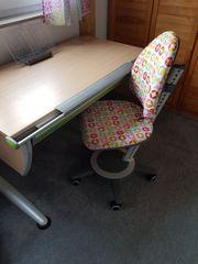 Set Schreibtisch Runner und Schreibtischstuhl