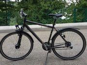 Trekking Bike Triumph