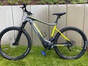 E-Bike Giant Fathom E 2