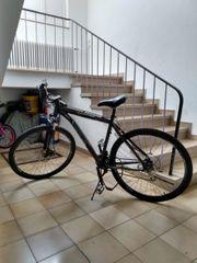 Fahrrad Zündapp Alu-MTB Blues 7