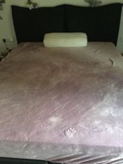 Boxspringbett HOUSTON fast neu
