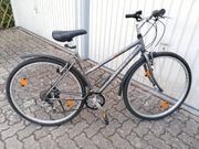 Wheeler 1600 MTB Damen- Rad