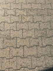 Knochensteine 6cm hoch ca 30qm