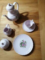 Edles Hutschenreuther Porcellain Rose 12