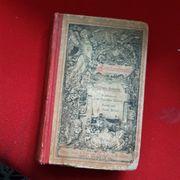 Uraltes Buch Familienfreund 1883