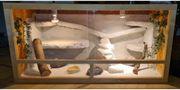 Terrarium 120x 60 x60 Inklusive
