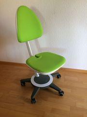 moll Maximo - ergonomischer Kinderstuhl