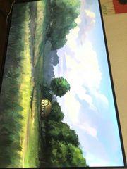 Hisense Fernseher 146 cm im