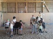 Kindergeburtstag am Ponyhof