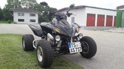 Dinli Quad DL901 450 ATV