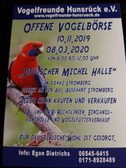 Vogelbörse am 10 11 19