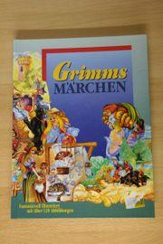 Grimms Märchen - fantasievoll illustriet - perfekt