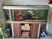 Aquarium Aquatlantis 1 50mx50cmx50cm komplett