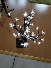 Bäumchen mit Blüten