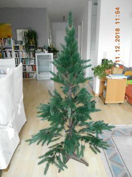 Weihnachtsbaum Natürlich.Weihnachtsbaum In Gaggenau Haushalt Möbel Gebraucht Und Neu
