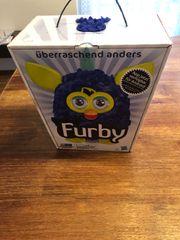 Furby Edition