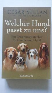 Sachbuch Welcher Hund passt zu
