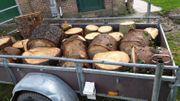Brennholz zum selber hacken