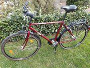 Herren-Fahrrad Cresta