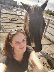 job als Pferdepflegerin gesucht