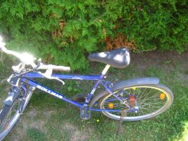 Herrenfahrrad Jugendfahrrad Mountainbike 18 Gang: Kleinanzeigen aus Birkenheide Feuerberg - Rubrik Mountain-Bikes, BMX-Räder, Rennräder