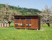 Suche Bienenhaus