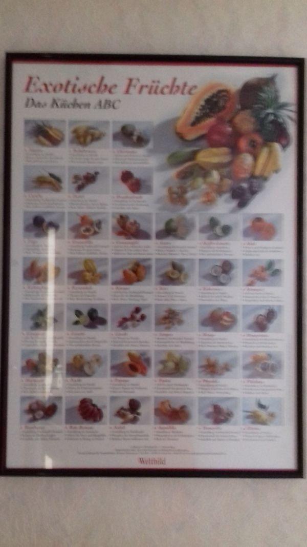 Bild mit exotischen Früchten