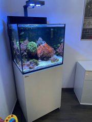 Meerwasseraquarium RedSea Max E170 Komplett