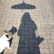 Hundesitter Haussitting Biete Urlaubsbetreuung