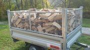 brennholz buche 1 Jahre alt