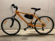 Totem Fahrrad 24 Zoll
