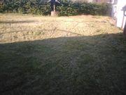 Garten- Grundstücksarbeiten Reinigungsarbeiten Unkraut Moos