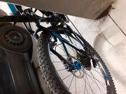 Cube 17 Zoll Mountain Bike