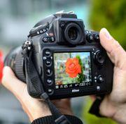 Fotografieren mache günstig schöne Fotos