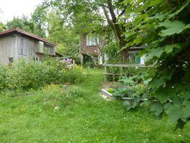1-Familien-Häuser - GESUCHT Freundliches Zuhause im Grünen