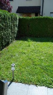 Gartenpflege Heckenschnitt in Hohenems