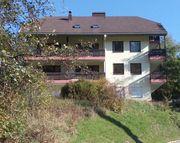 1 Zi Appartement mit Balkon
