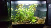 Aquarium Fluval Flex 57 Liter